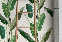 пальмы тропики