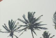 Melhor viagem - Cabo Verde
