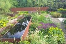 Water in garden / Woda w ogrodzie