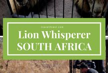 SOUTH AFRICA / Sharing useful tips, inspiration and advice from South Africa. From travel stories to where the best spots to visit, don't miss anything!