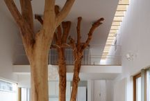 Interior design / by Ozlem Sungur