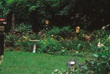 Bird Friendly Spaces / Inspiration for creating a bird friendly place