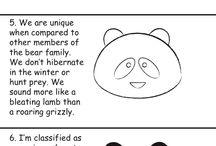 Animal draw