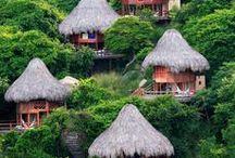 Colombia / by Erica Duffield