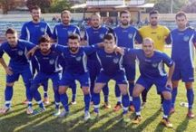 ΦΑΣ Νάουσα ποδόσφαιρο 2016-17
