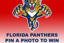 Contests / Florida Panthers Pin it to Win it Contests / by Florida Panthers