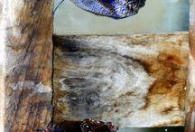 Art - Butterflies and more