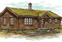 Cabin/Hytte