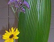 composé fleurs