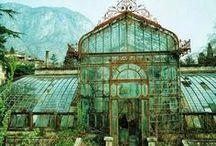 botaniske  hage