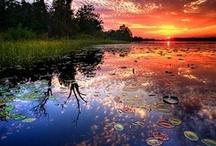Beautiful Reflections!