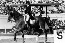 Icons in the Horse World