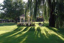 Arizona Par 3 and Executive Golf Courses / Arizona Par 3 and Executive Golf Courses