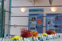 Weddings & Special Events / To learn more about renting the aquarium for special events check http://aquarium.ucsd.edu/Plan_a_Visit/Facility_Rental/