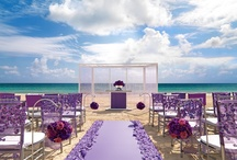 Wedding Decor Collections at Palace Resorts / Get inspired by our customizable wedding decor collections available for your destination wedding at Palace Resorts.