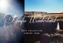 Pacific Wonderland Collection