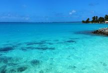 Home / Images from the Cook Islands