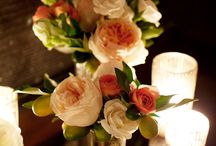 Flowers/Cocktail Centerpieces / by Bright Occasions
