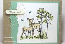 Wildlife cards