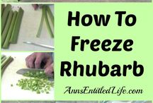 about rhubarb/recipes