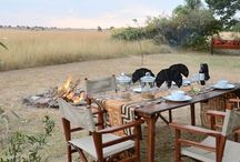 Safari Lodges / Explore the depths of Africa at ease; take on any expedition with confidence as you shelter in the comfort of a fully furnished safari lodge.