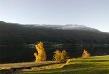 Nordfjordnatur
