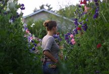 The Flower Farm at Laughing Crow / by Laughing Crow & Company