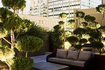 Penthouse Garden Inspiration