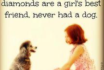 I love dogs (sooo sooo much!)