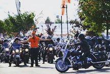 Harleysite #harleysite #harley #harleydavidson #showoffmyharley #bikelife #follow #instagood #picoftheday #harley #hd #ftw