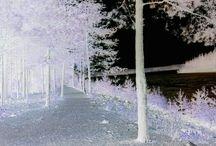 Город  Йоенсуу  события и пейзажи