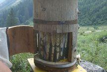 Bee пчелы