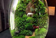 las w akwarium