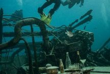 Trip report MY Blue Seas 19.06.-26.03.2015 / St. Johns Diveguides: Nina & Nemo Die vom Wetterbericht angesagte ruhige See kam erst die letzten zwei Tage unserer Safari nach St. Johns an.