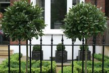 Stamford Windows & Doors