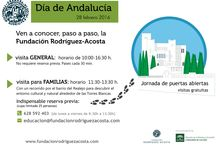 28 Febrero: Día de Andalucía 2016 / Os mostramos algunas instantáneas del Día de Andalucia.