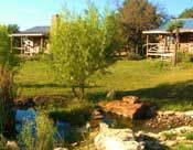 Texas Bed & Breakfast Venues / Who wouldn't enjoy a delicious breakfast, quaint and unique room, friendly Texas style service, and fun things to see and do nearby.