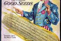 seeds & starts / by Wendell Smith