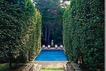 Pool la la / by Brooke Wise