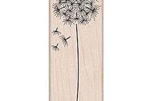 Cards - Dandelion, Hero Arts