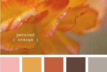 Herbst1 / Farbkarte
