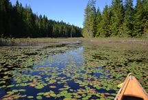 Paddling in Canada / The best paddling adventures in Canada