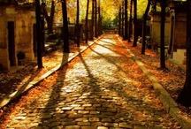 Autumn / by Heather Huber