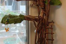 Kocie drzewka