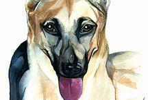 Retrato de perro en acuarela