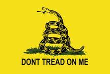 Libertarian/American philosophy