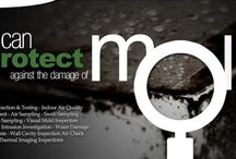 moldinspectiontesting ca