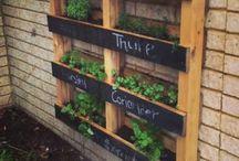 Garden ideas / Tuinideeën