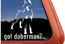Cool Stuff for Doberman Lovers