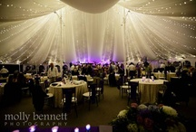 Grand Marquee / Out Door Tent